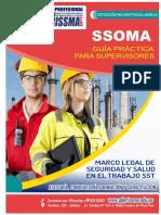 MOD-10000009-MODULO I MANUAL SSOMA.pdf
