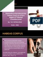 Diapositivas HABEAS CORPUS (1)