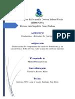 Diseño Curricular Dom.....pdf