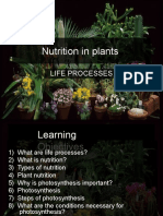 NutritionInPlANTS-1