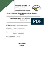 tarea de practica 4 comercializacion de mandarina.docx