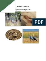 brochure wildlife _rupandehi