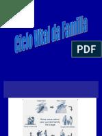 MIF_5_CicloVital_Fam2019
