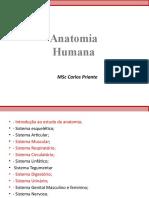 Sistema Esquelético MODULO2.pptx