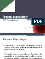 Sistema Reprodutor.pptx