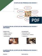 CLASIFICACIÓN DE LOS ESTILOS DE APRENDIZAJE DE GRASHA