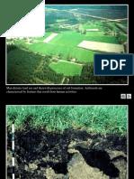 Antroposoluri imagini.pdf