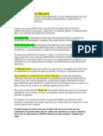 SENTENCIA DEL PILOTO