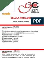 SEMINARIO VIRTUAL BIOLOGÍA 05