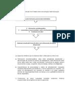 IDENTIFICACION DE FACTORES PSICOSOCIALES INDIVIDUALES