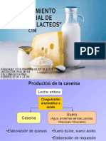 Bases para elaboración de quesos
