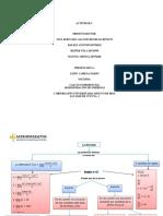 mapa conceptual de la drivada PDF2