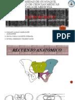 Fractura de pelvis completa (2).pptx