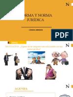 SEMANA XI. NORMA Y NORMA JURÍDICA