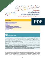 Metabolismo de los Glúcidos - Bioquimica de Laguna y Piña