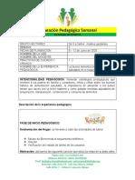 PLANEACION PEDAGOGICA SEGUNDA SEMANA DE JUNIO 2 - Reflexion Pedagogica