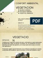 vegetacion-141119113056-conversion-gate01