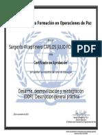 5.5 DIPLOMA - DESARME, DESMOVILIZACION Y REINTEGRACION (DDR) DESCRIPCION GENERAL PARTICAS