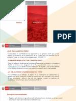 APP-Instructivo-Canastas-Perú-Mayo-2020-JCSM