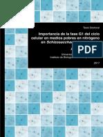 IBFG_RubioTenor_ImportanciaFase.pdf