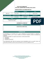 GUIAS LSC-FUSM-HEMOSTASIA