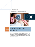 INSTRUTIVO REGISTRO SUBSIDIO MATERNIDAD Y LACTANCIA TSS.pdf