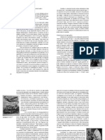 Silvia Dolinko grabado s XX.pdf