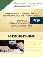 TEMA 1.- LA PRUEBA PERICIAL...pdf