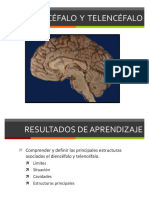 Clase 35 Diencefalo y Telencefalo.pdf