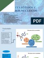 ÁCIDOS NUCLEICOS Y NUCLEÓTIDOS