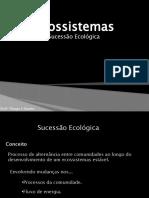 4-Ecossistemas sucessão ecologica