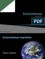 10-Ecossistemas aquatico II .pptx