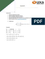 Algebra 2 - Taller 3 tapia-salas
