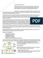 clase 5 Ortodoncia preventiva e interceptiva.pdf