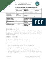 PROGRAMA PREPARACION Y EVALUACION DE PROYECTOS 2 (1)