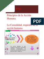 Principios de la Acción Humana La Casualidad, Requisito de la Acción Humana