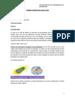 TPC SEGUNDO AÑO (1)