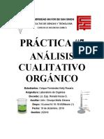 Analisis cualitativo organico