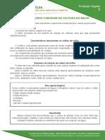 2-rotacao-de-culturas-com-base-na-cultura-do-milho.pdf
