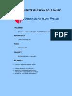 INFOGRAFIA GRUPO 4.Ing Industrial docx.pdf
