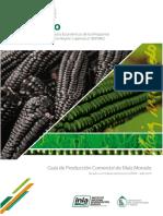 Medina-Guia_de_produccion_comercial.pdf