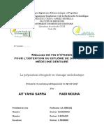 mémoire radi et ait.pdf