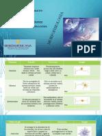 Comparativo-Sobre-La-Estructura-y-Funcion-de-Las-Celulas-Del-Sistema-Nervioso.pptx