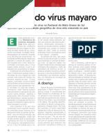 A Rota do Virus Mayaro