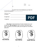 Osmosis and tonicity worksheet