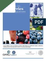 Berries Rutas Tecnológicas 2014-2018