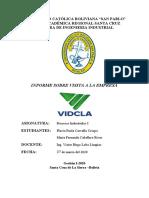 Informe VIDCLA.docx