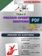 Proceso Operativo de Aud