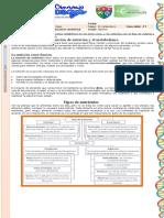 1. GUIA 1 función de nutrición .SÉPTIMO revisado (2)