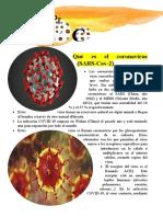 Qué es el coronavirus bolivia